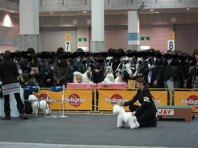 20111213004jpg.jpg