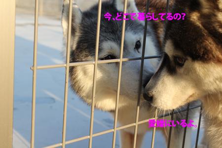 IMG_0691_edited-1.jpg