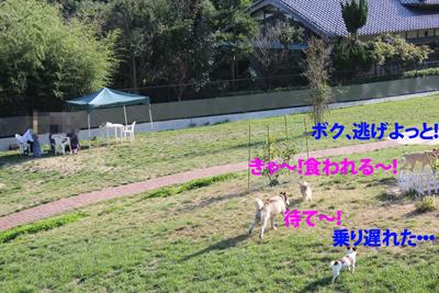 IMG_0778_edited-1.jpg
