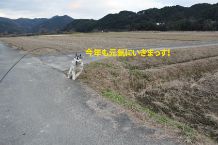 IMG_1046_edited-1.jpg