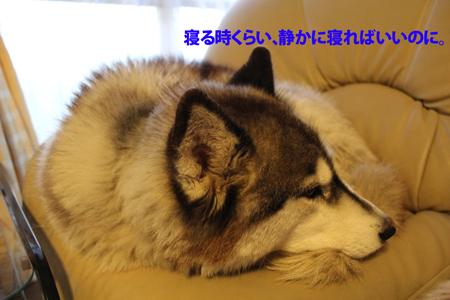 IMG_1164_edited-1.jpg