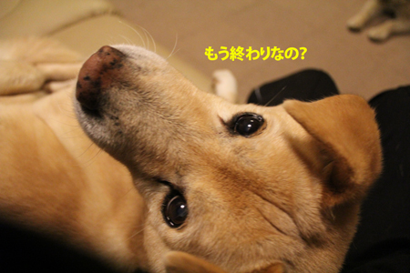 IMG_1269.jpg
