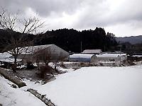 R0049656.jpg