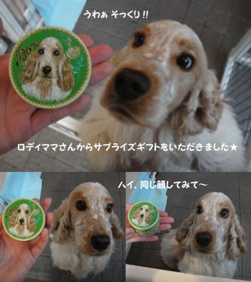 20111119-1507-20.jpg