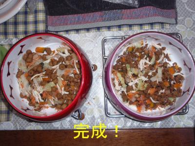 20101029_11_convert_20101029211327.jpg