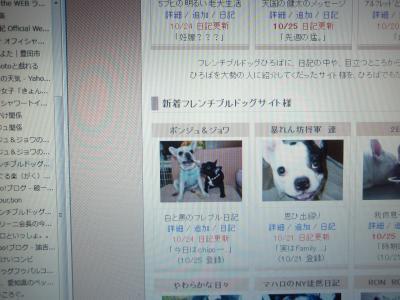 PA252104_convert_20101025200426.jpg