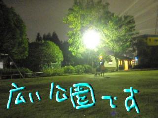 snap_bonjuandjoie_201010522184.jpg