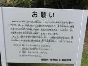 tokushima (10)