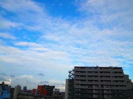 2011090406.jpg