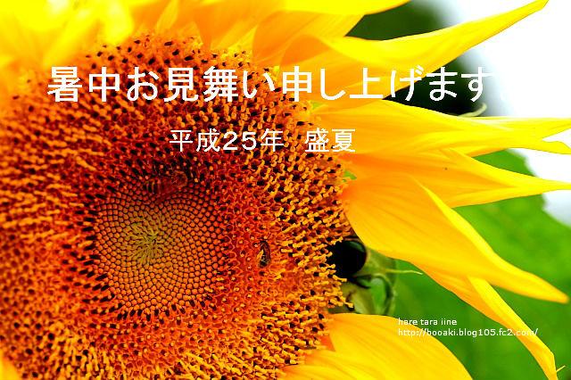 2013073003.jpg
