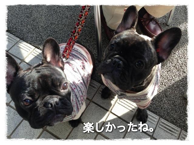 image_20130211234152.jpg