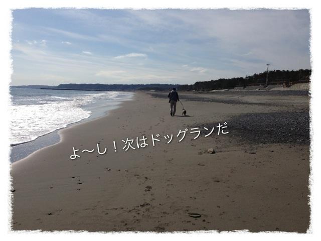 image_20130211234327.jpg