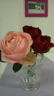 rose_20130620123431.jpg