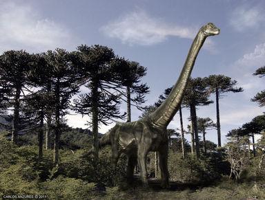 チリの恐竜