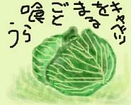 8ppy 大福