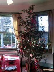 ブラフ18番館のクリスマスツリー