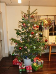 山手234番館:クリスマスツリー