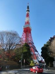 東京タワーとHato Bus
