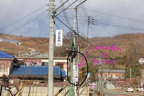 001_20110126122901.jpg