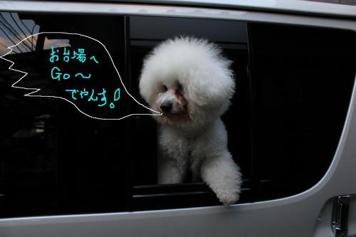 2_20101220110622.jpg