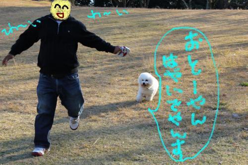 3_20101221155227.jpg