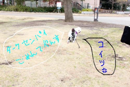 6_20110108132649.jpg