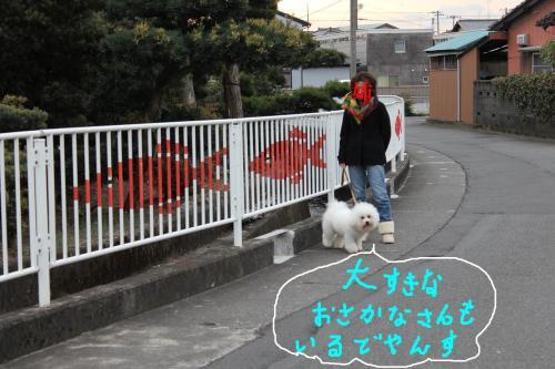 8_20110115211249.jpg