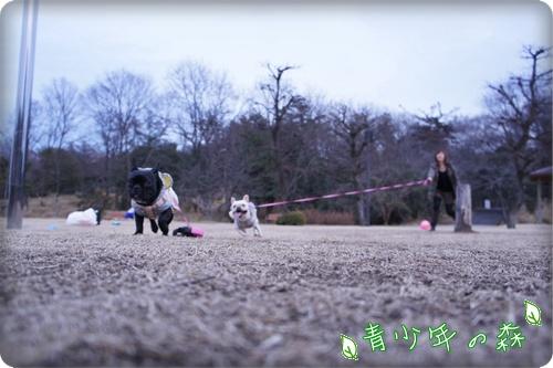 ☆青少年の森☆