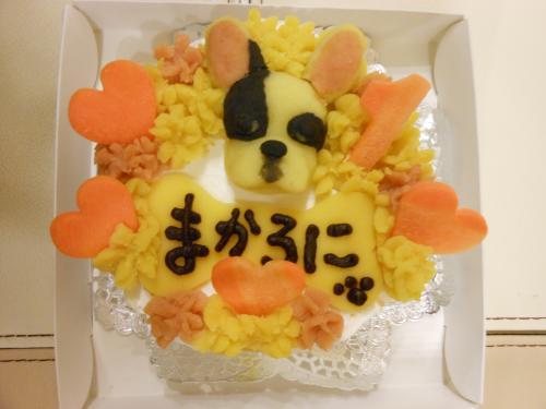 うちの子ケーキ