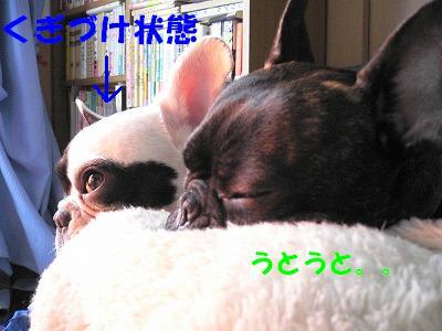 眠くなったじょ…
