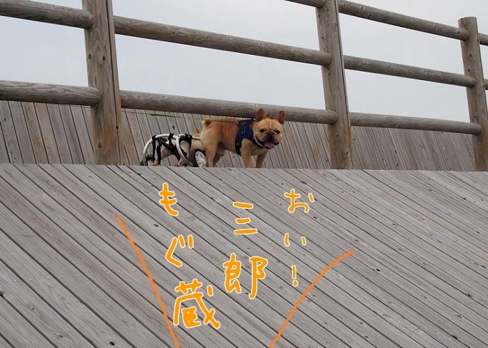 仲良く階段⑤