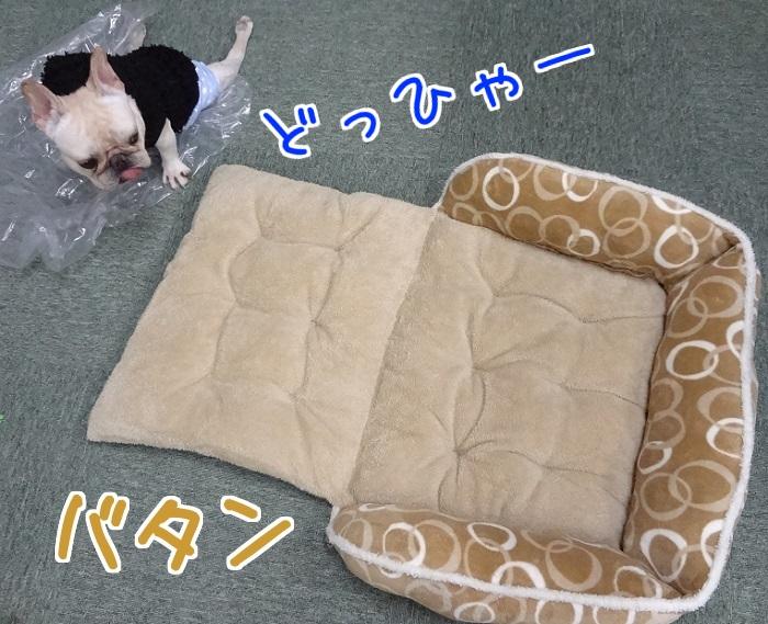 冬ベッド⑤