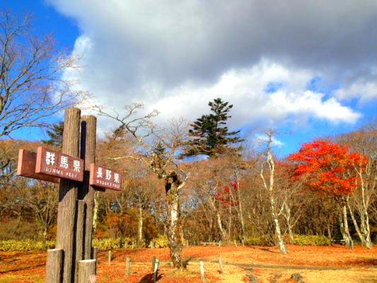 miharasidai20141102.jpg