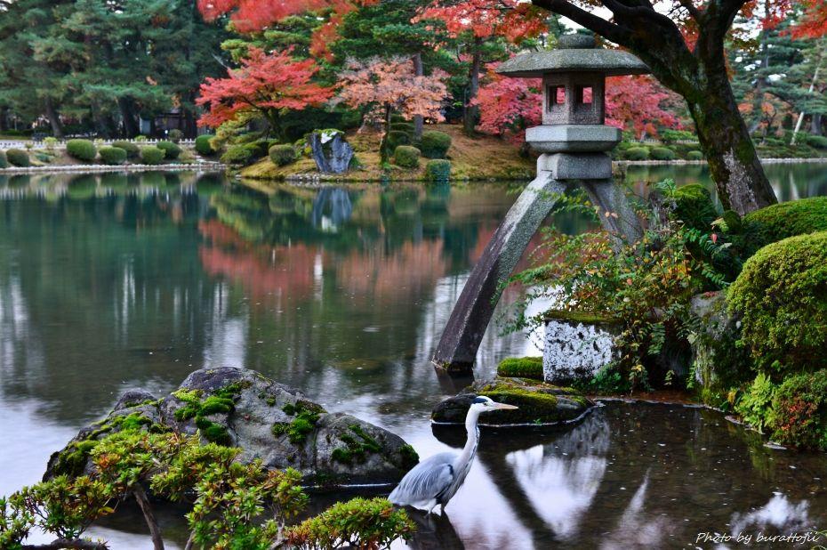 2014.11.20早朝の兼六園2