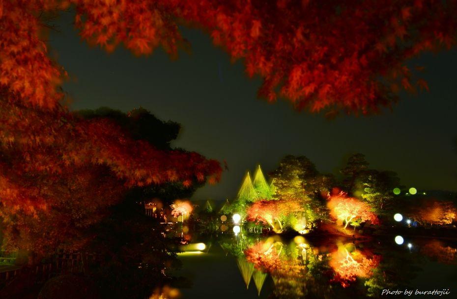 2014.11.21兼六園ライトアップ9