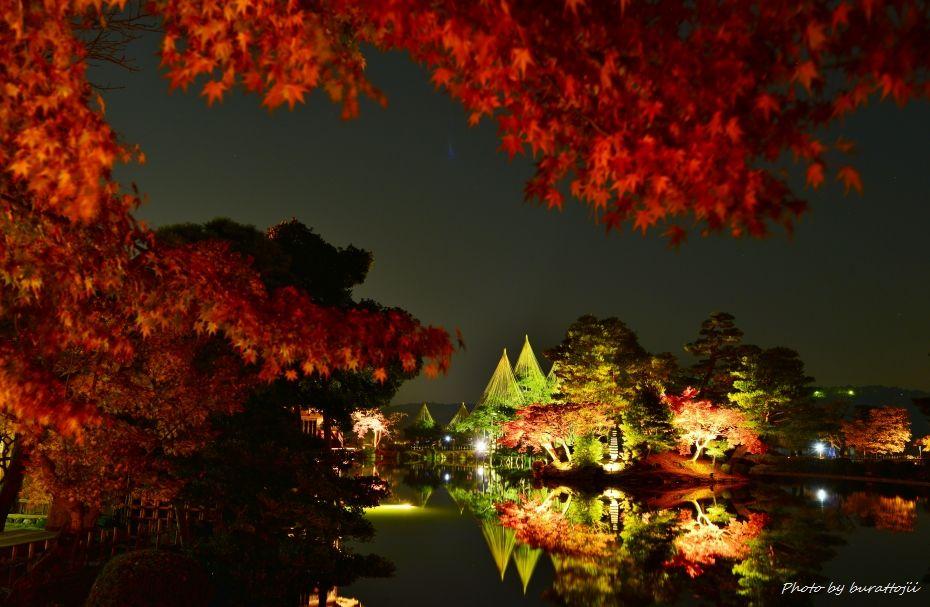 2014.11.21兼六園ライトアップ8