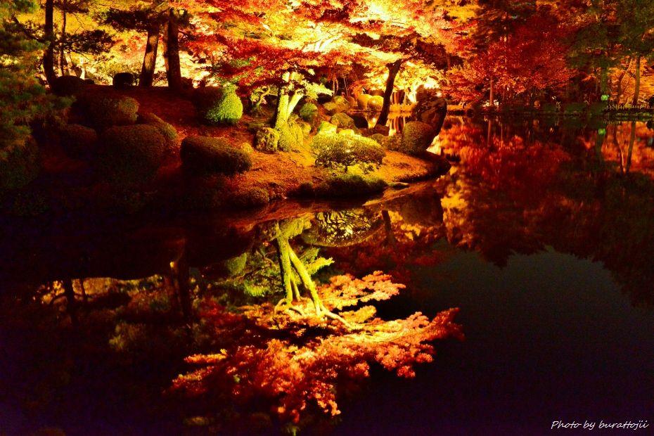2014.11.21兼六園ライトアップ6