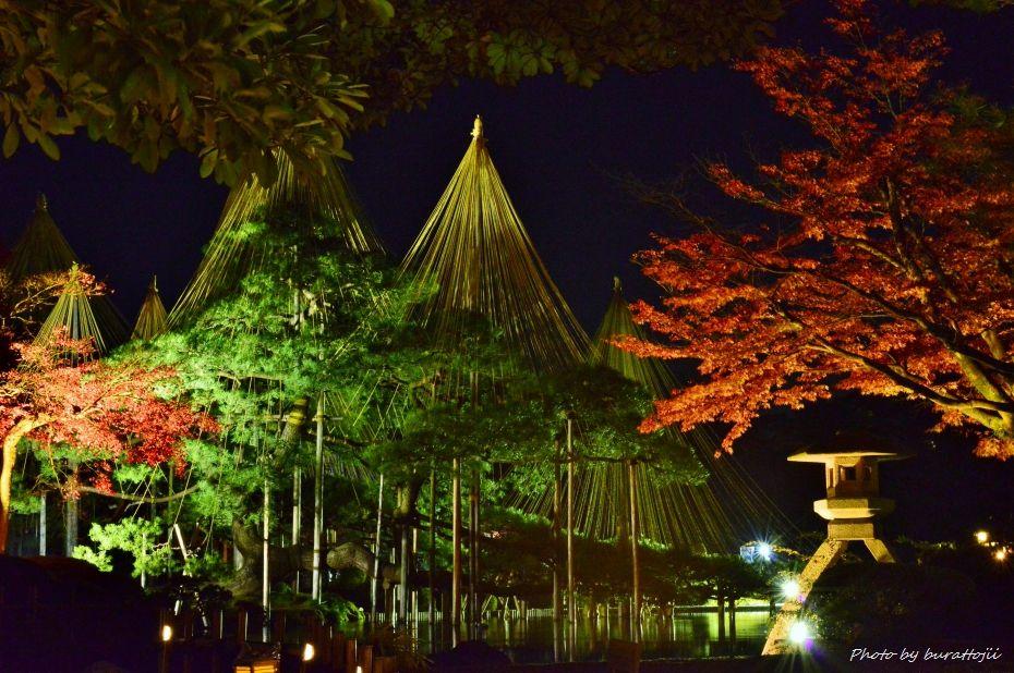 2014.11.21兼六園ライトアップ1