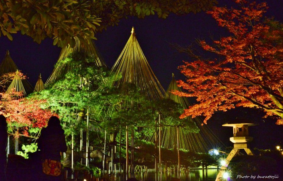 2014.11.21兼六園ライトアップ2