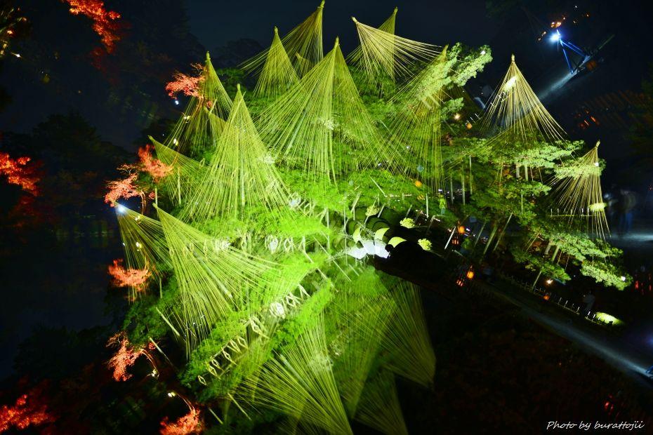 2014.11.21ファンタステックツリー6
