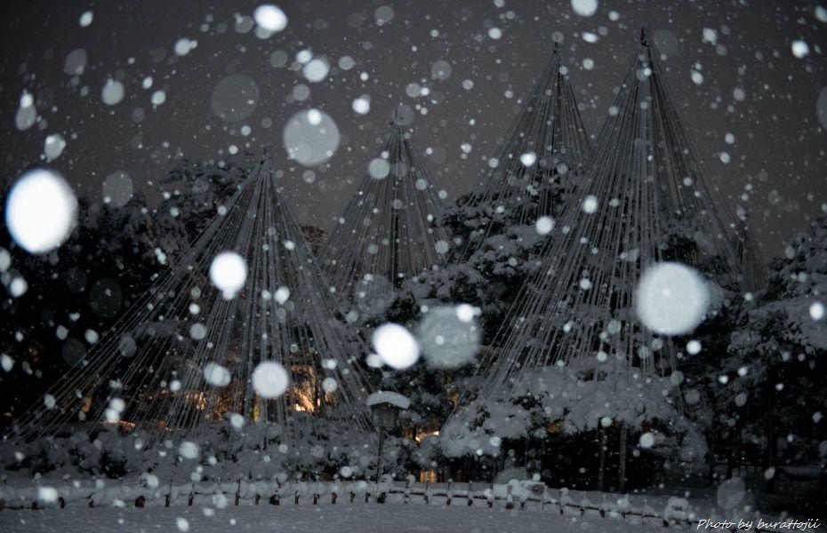 2014.12.06雪降る兼六園4