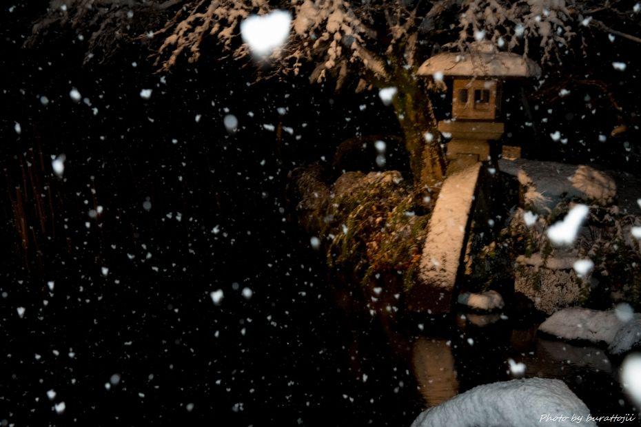 2014.12.06雪降る兼六園2