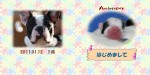 thumb_20110207223128.jpg