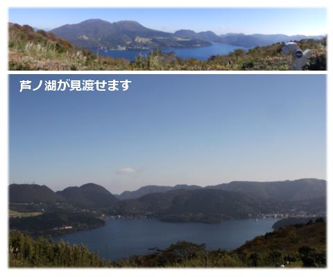 芦ノ湖が見渡せるよ