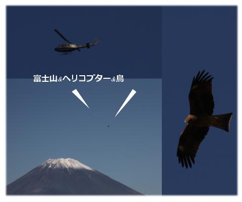 富士山とヘリと鳥
