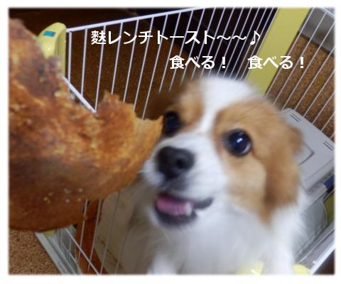 麩レンチトールト♪