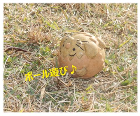 ミニレオくんボールで遊ぼ~♪