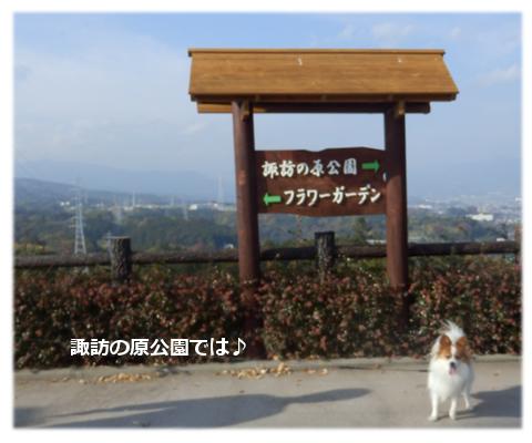 諏訪の原公園