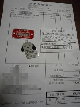 kinako110909_3.jpg