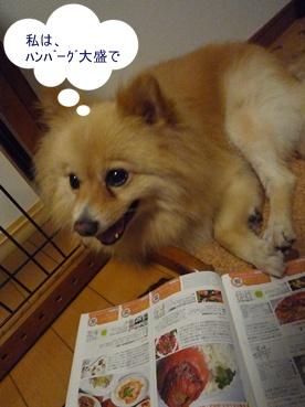 kinako110916.jpg